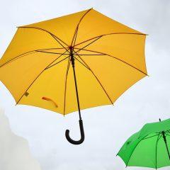 Kinderparaplu's en normale paraplu's